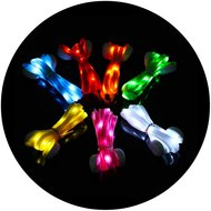LED-veters